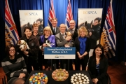 Proposed amendments to B.C.'s Prevention to Cruelty of Animals Act would enable the B.C. government to regulate commercial breeders through either a registration or licensing system.