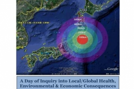 Fukishima nuclear disaster - one year later