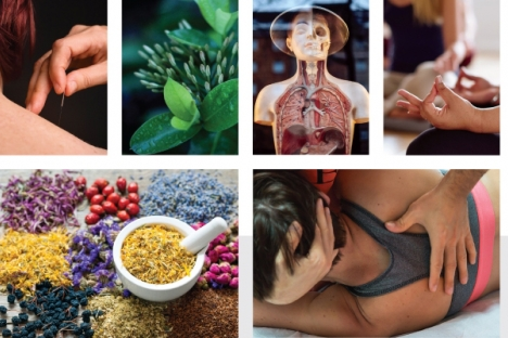 More than three-quarters of Canadians — 79 per cent — have used at least one complementary or alternative medicine (CAM) or therapy sometime in their lives.