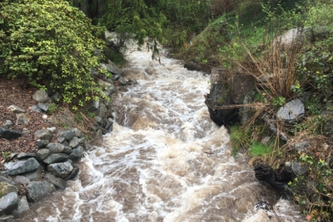 People are asked to keep away from creek and river banks as the expected increase in precipitation should see a rise in flows. — The Nelson Daily photo